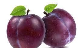 draw a plum